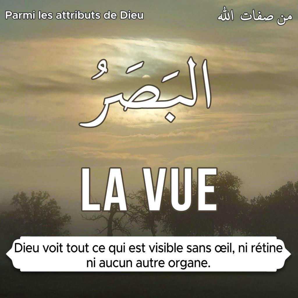 la-vue-attribut_de-Dieu-APBIF