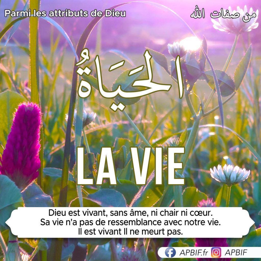 la-vie-attribut_de-Dieu-APBIF