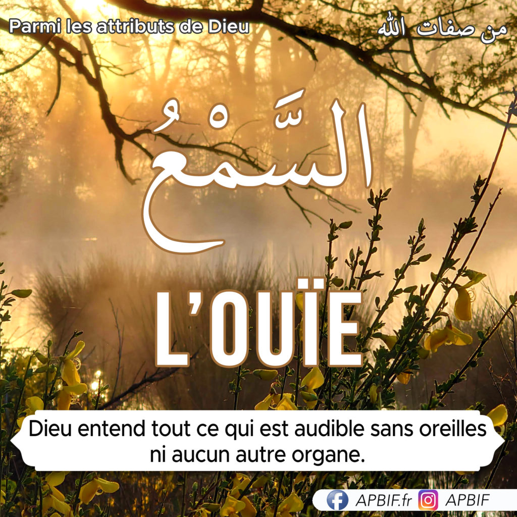 l-ouïe-attribut_de-Dieu-APBIF