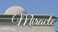 Miracle-Prodige-APBIF