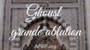 grande_ablution_APBIF