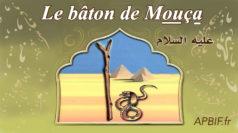 miracle-prophète-Moussa