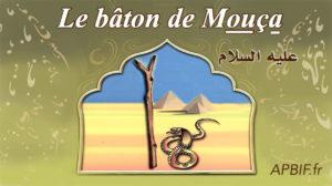 Le bâton de Mouça ^alayhi s-salam | VIDEO