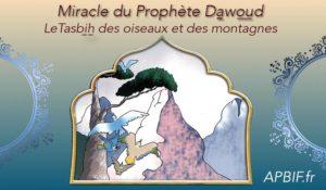 Miracle du Prophète Dawoud: Le tasbih des oiseaux et des montagnes (NOUVELLE VERSION)