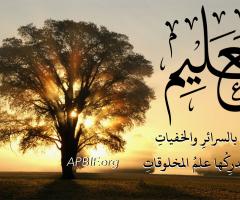 20_Al^Alim